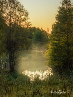 Early August morning - null