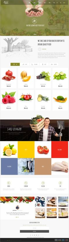 Vegan Food is a tidy and responsive #WooCommerce #WordPress theme suitable for #vegan #webdev any kind of food, vegetable Shop, makeup products or similar websites with 6 unique homepage layouts download now➩ https://themeforest.net/item/vegan-food-organic-store-farm-responsive-woocommerce-wordpress-theme/18255861?ref=Datasata