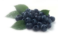 #Kyani - Wild Alaskan Blueberries    Nitric o2 (NO) is really a small , and simple molecule however is essential for cellular signaling, as well as dilates bloodstream. Nitric o2 only takes a couple of seconds within the blood before this binds in order to hemoglobin, the actual iron-rich oxygen-carrying substances within the blood, and it has a brief life.    http://www.BeKyani.com