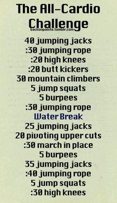 1/27/13 Cardio workout routine