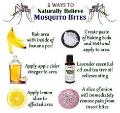 Natural Mosquito Bite Remedies - might need to try these.ella puffs up every time she gets a mosquito bite. Diaz Here you go, a few more ideas :) Natural Health Remedies, Herbal Remedies, Natural Cures, Holistic Remedies, Au Natural, Cold Remedies, Natural Treatments, Natural Skin, Mosquito Bite Relief