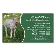 Bull or cattle farm standard business card 3 business cards and charolais beef cattle business card colourmoves