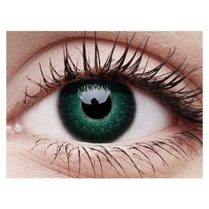 Lush Green Contact Lenses and Case ACCESSORIES ❤ liked on Polyvore featuring eyes, contacts and makeup