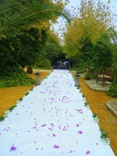 La vieja cigarra_ceremonia_weddings
