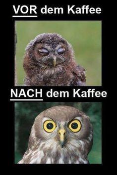 Vor Kaffee und nach dem Kaffee