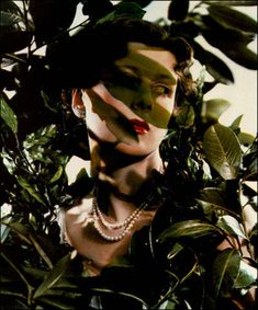 Yevonde Portrait Archive - Goddess Gallery -The Hon. Mrs James Beck as Daphné - 1935
