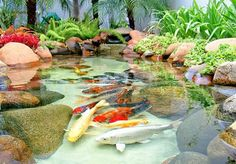 Fish Pond Backyard Ideas Planning a Backyard Fish Pond Fish Pond Backyard Ideas. A backyard pond can add a great deal of charm and appeal to your garden, but good planning is essential. Q Garden, Lake Garden, Edible Garden, Fish Pond Gardens, Koi Fish Pond, Fish Ponds Backyard, Backyard Landscaping, Backyard Ideas, Koi Ponds