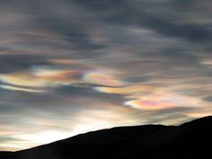 nacreous clouds #Protea #AW15 #inspo #motherofpearl