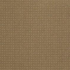 Color 00701 Field Stone In Savannah Ea024 Shaw Anso Nylon Carpet Georgia Industries