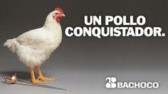 """""""UN POLLO CONQUISTADOR"""" / Espectacular / Fuente: Bachoco"""