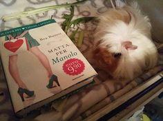 E, tra i lettori di #MattaperManolo c'è anche Palmiro: un bellissimo pretendente per Priscilla  Grazie a Licia per la foto!
