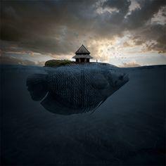 Island by Leszek Bujnowski