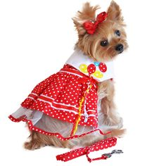 Lightweight and cool, this Red Polka Dog Balloon Designer Dog Dress is the perfect choice for Spring and Summer months. Heavy Duty Velcro Closures are safe and secure. The extra strength nylon reinfor