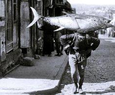 İstanbul'un Balık Cenneti Olduğu Yıllara Ait 22 Çok Nostaljik Fotoğraf