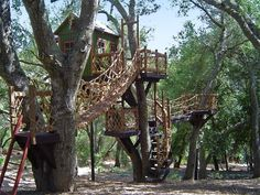 Barbara Butler-Extraordinary Play Structures for Kids-Tree Top Inn: Tree Top Inn Overview