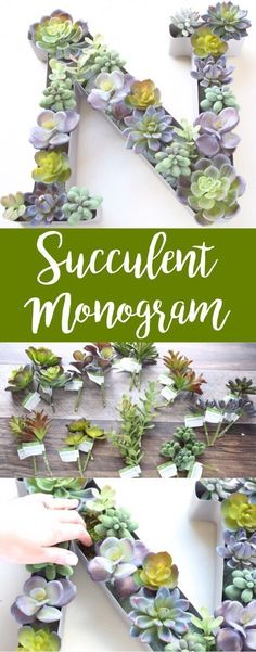 This Faux Succulent Monogram Planter was such a fun and easy DIY! Sure you can find these adorable monograms on but why buy those when you can Pick out your and plants and in no time you'll have a gorgeous succulent-filled monogram hanging on or near your Suculentas Diy, Diy Spring, Do It Yourself Organization, Diy Home Decor, Room Decor, Cute Dorm Rooms, Faux Succulents, Dollar Stores, Living Room Designs