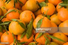 mandarin leaves - Google Search