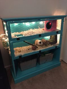 Guinea Pig Cage from an old book shelf. This would be a great place to keep the pigs because it's cute yet useful