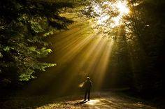 Haida Gwaii By Guy Kimola Photography Haida Gwaii, Stunning Photography, Nature Tree, Archipelago, British Columbia, Bike Rides, Sunrise, Places To Visit, Coast