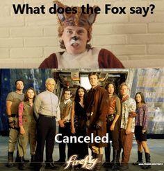 Bad, bad Fox!