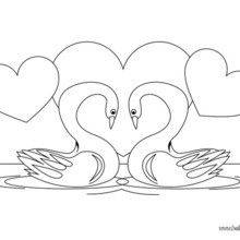 Swan Coloring Page You Can Also Color Online Your Warm Up Imagination And Nicely This From BIRD