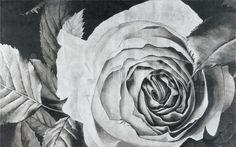 Una rosa, un messaggio d'amore e di natura, in foglia argento, ideale per arredare la camera da letto o un ambiente living