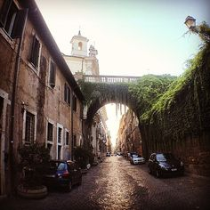 Un chilometro di eleganza che unisce due rioni (Ponte e Regola).  Voluta da Papa Giulio II come nuovo punto di accesso a San Pietro e commissionata al Bramane, Via Giulia rappresenta  una delle prime strade rettilinee di Roma.