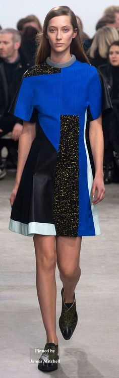 Proenza Schouler Collection Fall 2014 RTW