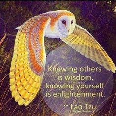 """""""Knowing others is wisdom. Knowing yourself is enlightenment."""" ☀ ~Lao Tzu"""