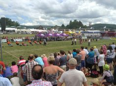 Tug-of-war!! Agricultural Business Analysis team had a great day at the Welsh Show 2013! #agriculture #farm #abafoodchain