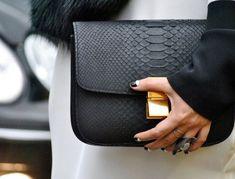 Céline Exotic Leather Box Bag