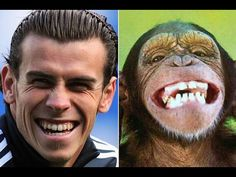 Footballers VS Animals (footballers that look like animals) Like Animals, That Look, World, Fictional Characters, Marketing, Art, Art Background, Kunst, The World