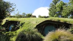 I visited the Hobbiton movie set in December and I thought you might like some pictures. The attention to detail is stunning. - Imgur