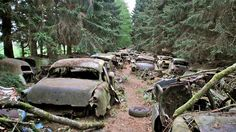 Most haunted car cemetery: 'WWII traffic' drowned in Belgian moss for 70 years (PHOTOS) — RT News
