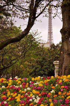 Quejadore Paris (@Que_jadore)   Twitter **