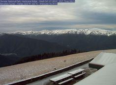 It snowed at Hurricane Ridge(Olympic National Park)