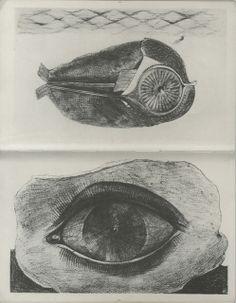 Frottages de Max Ernst - Histoires naturelles, 1926