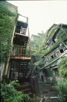 廃墟には不思議な魅力がある。時がとまったような、無常観を感じるような。それは不思議である。また自然界と人間界の境界の様にも感じる。人間が自然界を浸食したのか?自然界が人間を浸食しているのか?その場所はそんな感覚に陥る。日本には廃虚マニアと呼ばれる存在の人々が存在する。かつて人が住んだ建物や人が作った建築物が荒廃していく様子に魅力を感じるのである。 そこには桜の散っていく姿が美しいと感じるの同じように、朽ちていく様子に儚さや無常観を感じているのである。