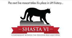 Completely excited...wish I could go meet the new Shasta. Go Coogs!