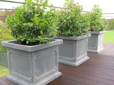 Soil For Container Gardening Vegetables Urn Planters, Concrete Planters, Garden Pots, Vegetable Garden, Gemüseanbau In Kübeln, Container Gardening Vegetables, Concrete Projects, Raised Beds, Garden Landscaping