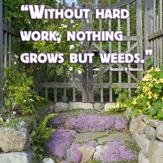 Without hard work nothing grows but weeds.