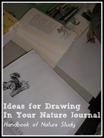 Handbook of Nature Study: Ideas for Drawing In Your Nature Journal