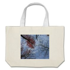 Looking Up! Canvas Bag!  There's a great selection of styles to choose from.  Starting around $22 this bag is very affordable!