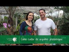 YouTube Plantar, Orchids, Youtube, Nature, Instagram, Facebook, Garden Pests, Garden Beds, Toe