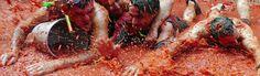 Tomatina de Buñol 2013. Una fiesta sin igual!