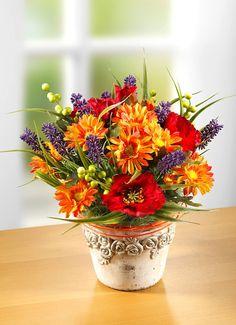 Plants, Poppy, Flowers, Plant, Planets