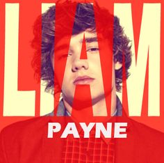 ∞ One Direction [1D] → Liam Payne