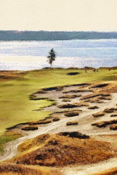 Chambers bay Cool Photo Effects, Cool Photos, Country Roads, Creative, Painting, Art, Art Background, Painting Art, Kunst