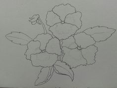 Line drawing of a  pansy before color..to be my first attempt at watercolor. Pics to follow (unless i completely butcher it ^-^)