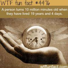 Wow! Cool!